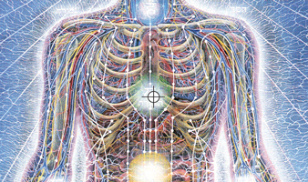 Alex Grey sacred art